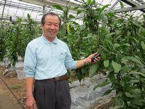 茄子の農家 山田時幸さん