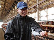 タマゴの販売、生産農場 岡崎市中島町  三栄鶏卵  市川尚宏さん